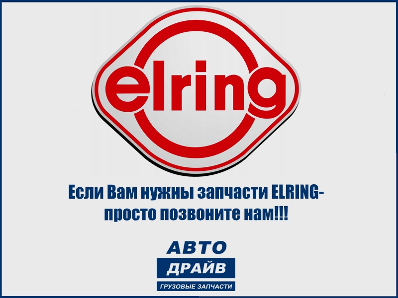 ELRING 768.839